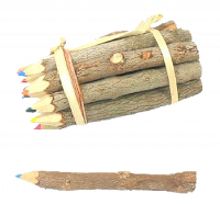 twig pencil crayons