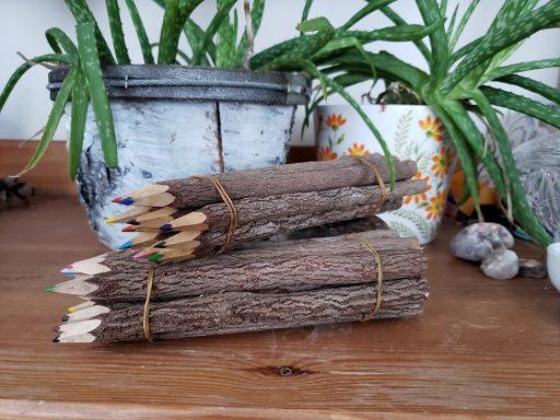 big twig pencil crayons fair trade